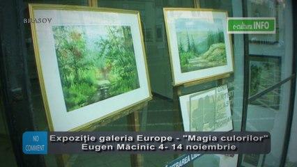 Expozitie Eugen Macinic