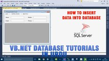 P(4) VB.NET Database Tutorials In Urdu - How to insert data into database