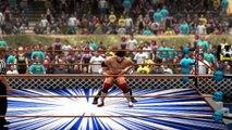 Wrestling Fight - Last Man Standing Match - Triple H vs Brian Danielson (WWE 2K14)