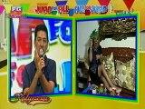 Eat Bulaga (AlDub - Kalye Serye) Juan For All, All For Juan November 9 2015 Part 6