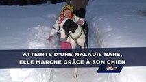 Une fillette atteinte d'une maladie rare marche grâce à son chien