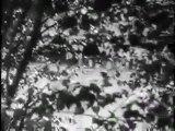 Ecstasy (1933) Hedy Lamarr