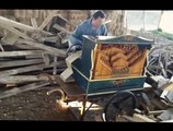 Smooth Criminal played on barrel organ is pure gold!! Michael Jackson Cover