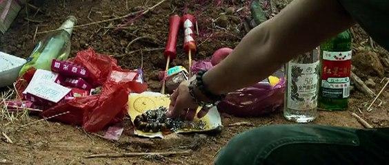 Фильм Дикий город (2015) смотреть онлайн в хорошем качестве бесплатно » Смотреть online новинки филь