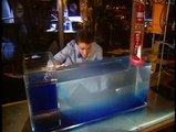 Bill Nye The Science Guy S2E09 - Ocean Currents
