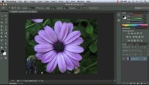 Adobe photoshop, Working with the Lasso Tools