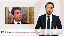 Manuel Valls : un animal politique blessé