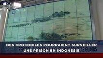 Des crocodiles pourraient surveiller une prison en Indonésie