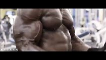 Bodybuilding Motivation - BICEPS & TRICEPS WORKOUT
