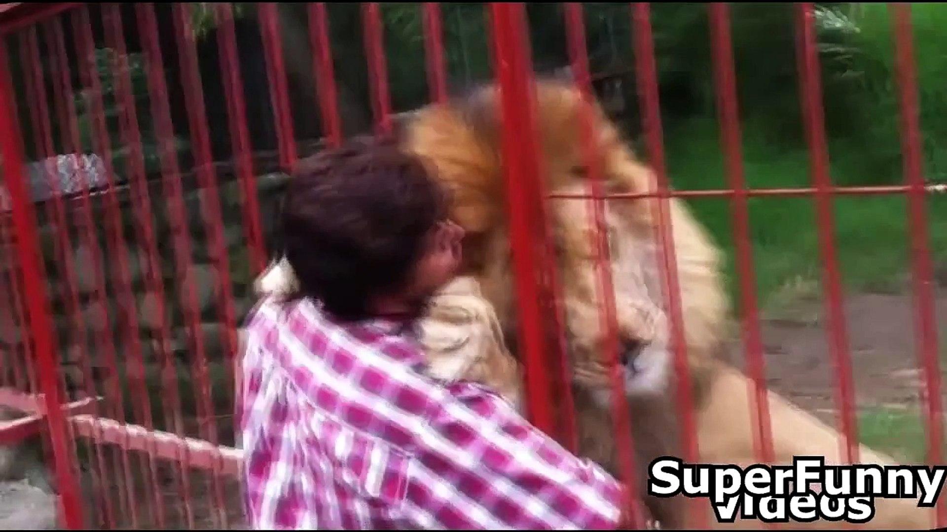 Cute Animal Videos Compilation 2015 Cute Funny Videos Animals 2015
