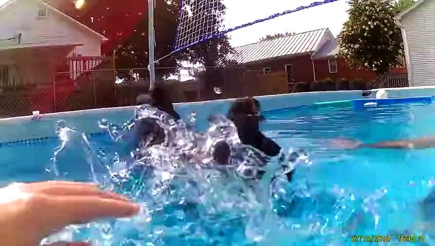 Can Chickens Swim?