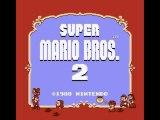 Super Mario Bros 2 Nintendo Nes Test 55