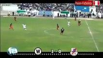 Walter Ormeño 1 vs 0 José Gálvez FBC Segunda División Resumen y Goles 2014