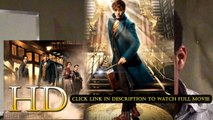 Fantastic Beasts and Where to Find Them 2016 ver online pelicula español #Fantastic Beasts and Where to Find Them 2016 ver pelicula latino online