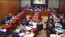 Intervention en Commission à l'Assemblée nationale lors de l'audition de Mathieu Gallet, PDG de Radio France
