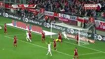 Poland 3-1 Czech Republic ~ [Friendly Match] - 17.11.2015 - All Goals & Highlights