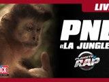 """PNL """"Jungle"""" dans Planète Rap !"""