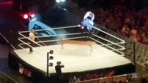 Seth Rollins suffers knee injury at WWE Live Event in Dublin Ireland