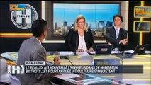 Mise Au Net: Beaujolais nouveau: le millésime 2015 a un goût très amer