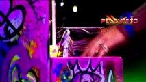Coldplay - Paradise (Acapella)