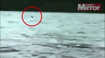 Is this NESSIE? Could this New Video Footage Prove the Existence of the Loch Ness Monster?