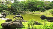 Relaxing Japanese Music, Zen Music with Traditional Flute, Koto, Shamisen