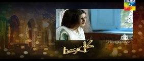 Gul E Rana Episode 04 Promo HUM TV Drama 21 Nov 2015