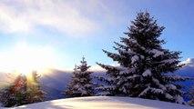 Sibelius - The Spruce Op.75 n°5