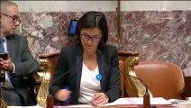 10.11.2015 - 1ère séance : Projet de loi de finances pour 2016 : Ecologie, développement et mobilité durables (Vote)