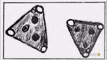 UFOs Declassified - Season 1 Episode 3 - Black Triangles