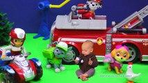 PAW PATROL Nickelodeon Paw Patrol Baby & The Assistant a Paw Patrol Video Parody 2