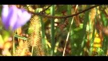 Agri Nature & Forêt Vic-en-Bigorre 100% Nature