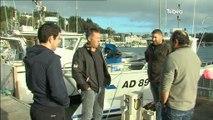 Pêche de bar: Les pêcheurs interdits de pêche pendant 6 mois