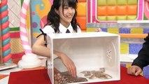 Des japonaises doivent deviner ce qui se cache dans une boite !