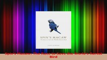 PDF Download  Spixs Macaw The Race to Save the Worlds Rarest Bird PDF Full Ebook