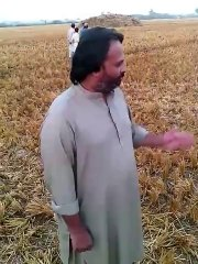 Zero tillage wheat sowing in Usta Muhammad, Pakistan