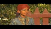 Hamza Ahmed Qureshi - Aaye Nabiyoun Ke Sardar - Rung E Hassan - Volume 2010