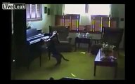 Four-legged singers and musicians. Funny animals play music and sing