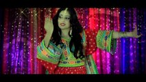 "ARIA BAND ""Gonjeshkake Telayee"" Official Video 2013 HD"