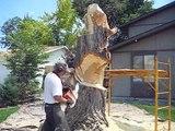 Lueb Popoff sculpte un tronc d'arbre avec sa tronçonneuse