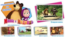 Masha and the Bear Complicated story we would like to have something to unravel!