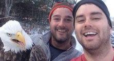 Ils font un selfie avec un aigle qu'ils viennent de sauver