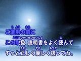 トリセツ (カラオケ) / 西野カナ