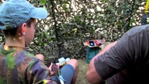 The Shooting Show – pigeon shooting with a young gun AND Scott the Fox custom calls