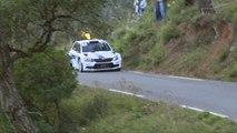 Championnat de France des Rallyes - Freddy Loix au Rallye du Var