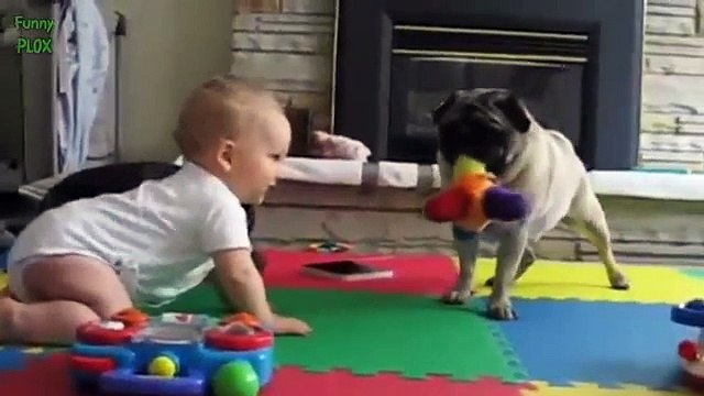 Funny Babies Annoying Cats and Dogs Compilation 2014 [HD]