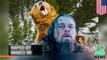 Leonardo DiCaprio raped by a bear in new film, says Drudge Report. Not true