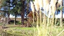 Les Cabanes De La Petite Sapiniere | La Cabane Spa de Céline