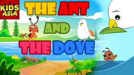 THE ANT & THE DOVE | Kids Animated Story | Tales Of Panchatantra | Kids Asia