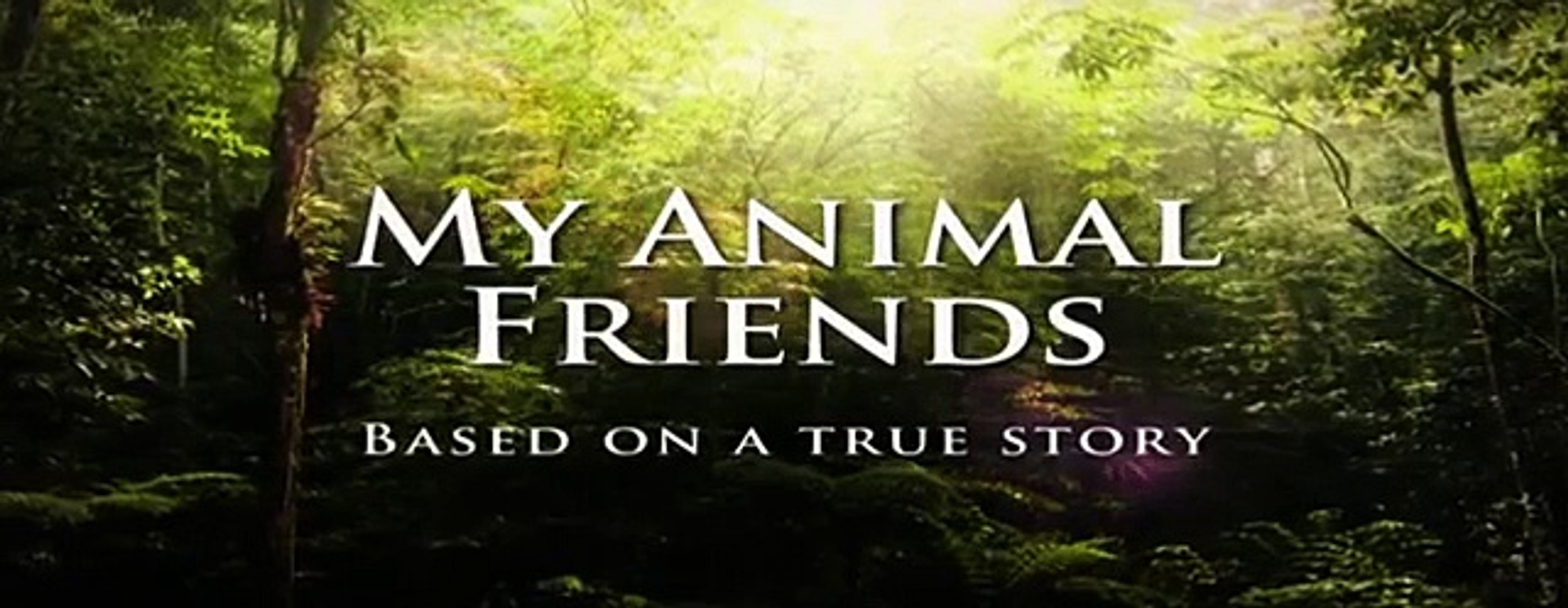 Brumby - My animal friends - Animals Documentary -Kids educational Videos